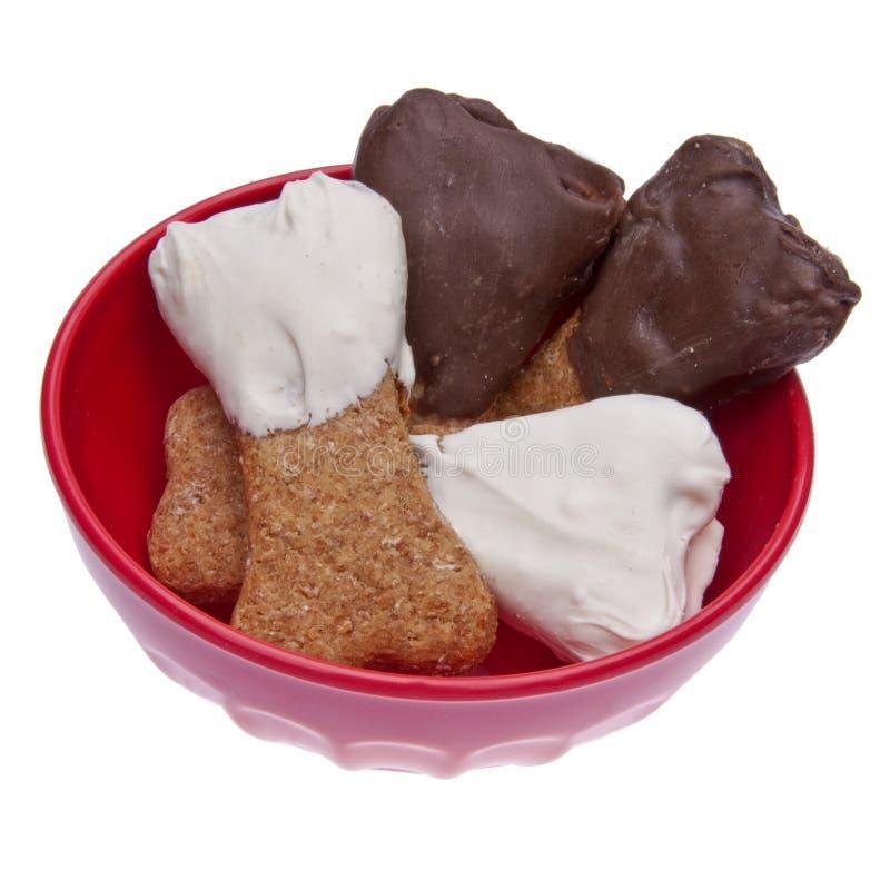 Schokolade eingetauchte Hundefestlichkeiten lizenzfreie stockfotografie