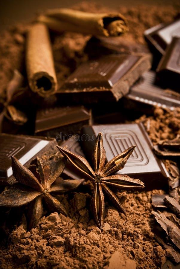 Schokolade und Gewürze lizenzfreies stockbild