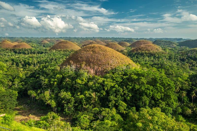 Schokoladen-Hügel, Bohol Insel, Philippinen lizenzfreies stockfoto