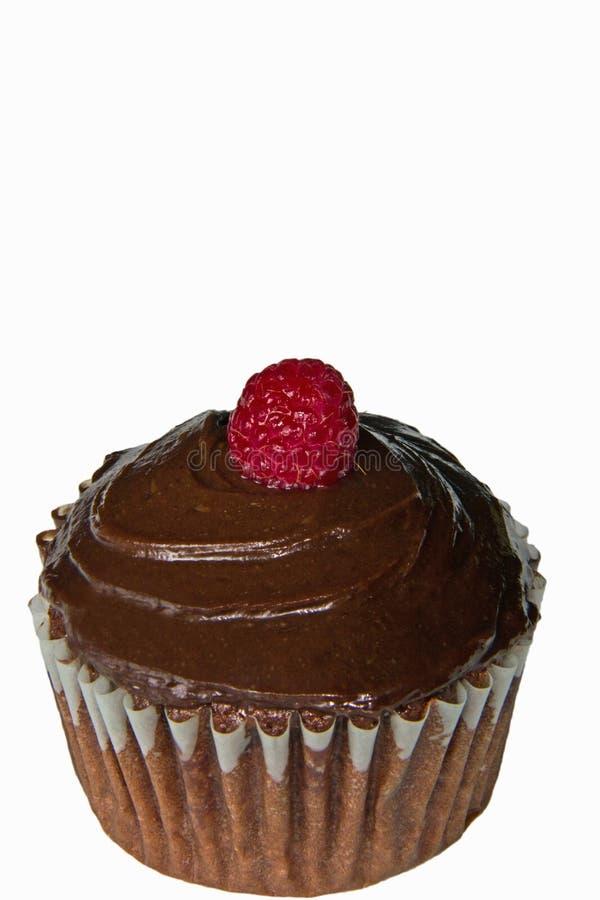 Schokoladen-Himbeerkleiner kuchen stockfotografie