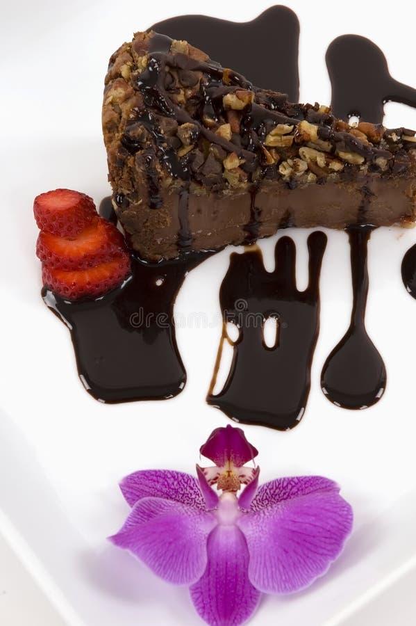 Schokoladen-Käsekuchen stockfotografie