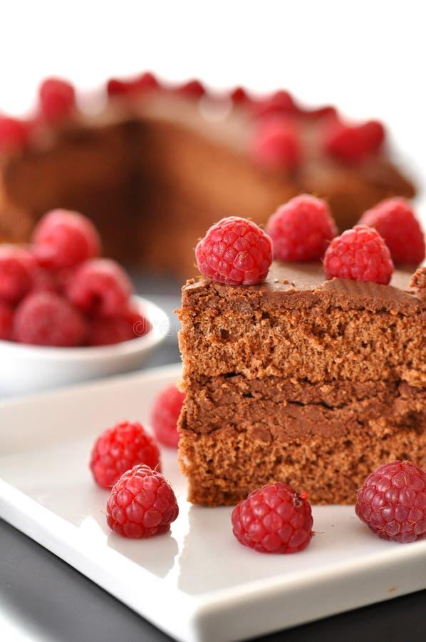 Schokoladen-Kuchen mit Himbeeren lizenzfreie stockfotos