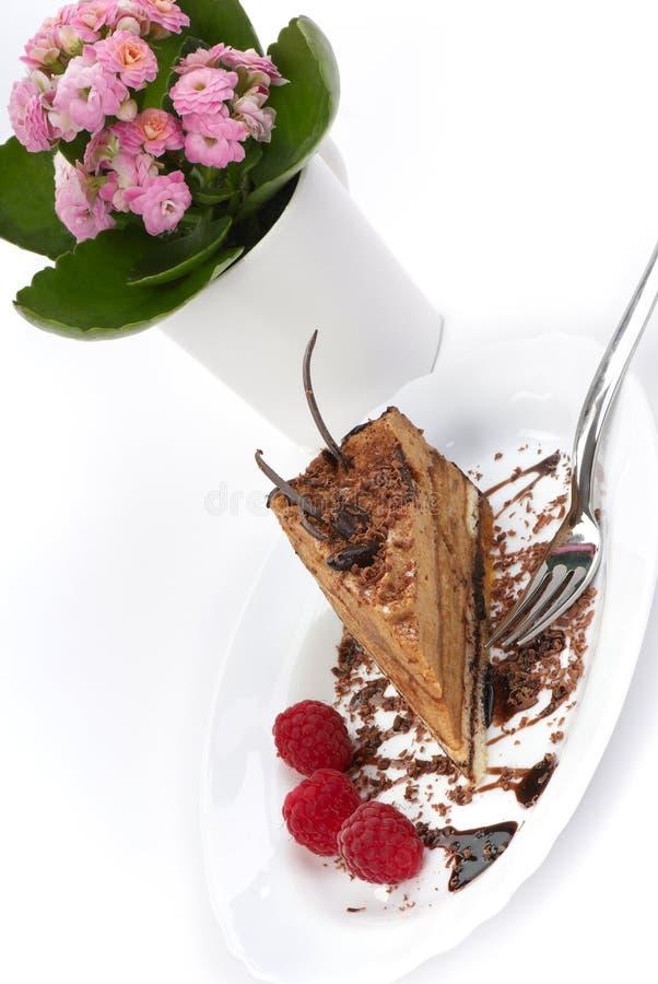 Schokoladen-Kuchen und Himbeeren lizenzfreies stockfoto