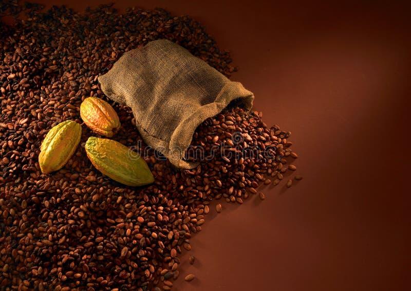 Schokoladenbohnen lizenzfreies stockfoto