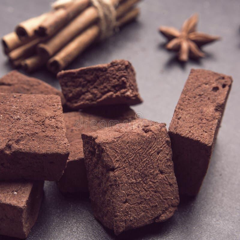 Schokoladeneibische mit Gewürzen lizenzfreies stockbild