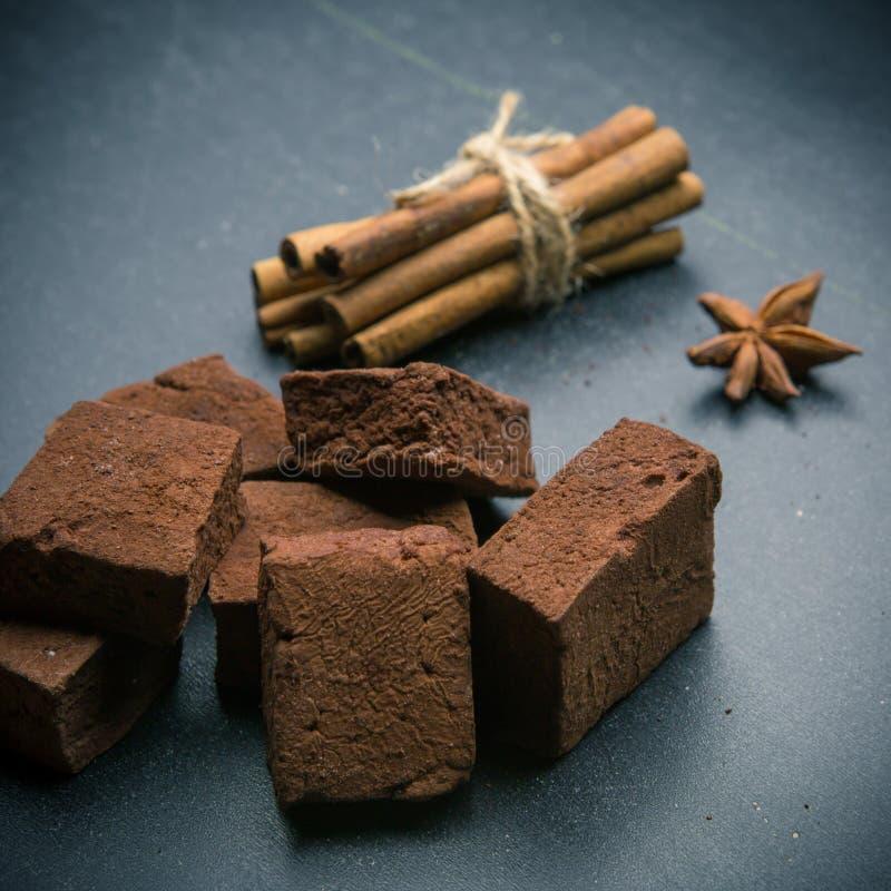 Schokoladeneibische mit Gewürzen lizenzfreie stockfotos