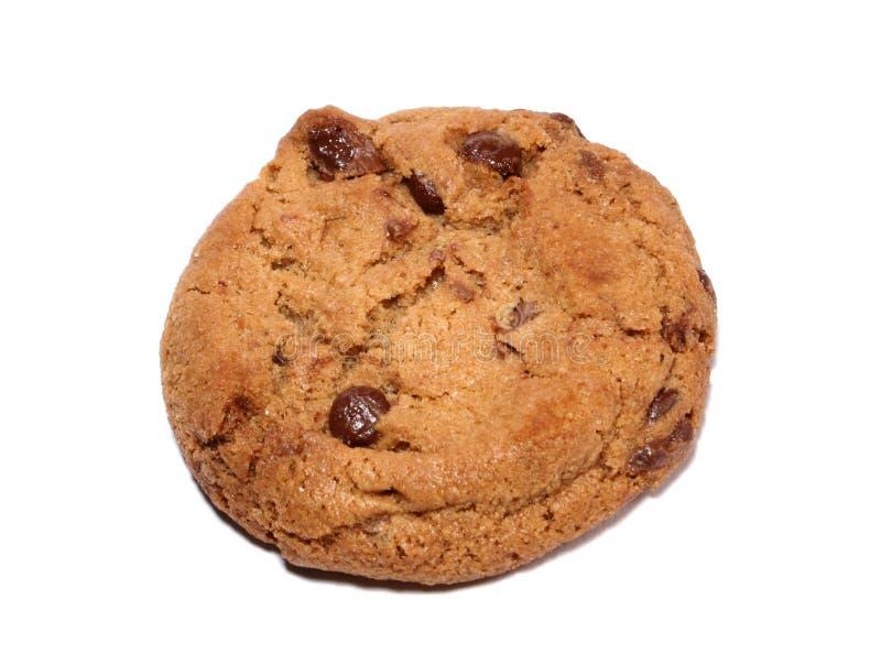 Schokoladenkeks stockfoto