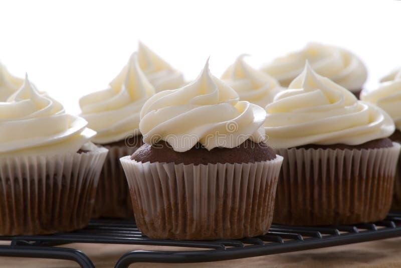 Schokoladenkleine kuchen mit der Vanille, die auf einem weißen Hintergrund bereift lizenzfreies stockfoto