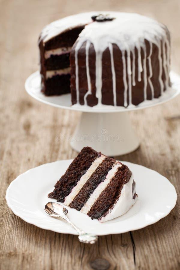 Schokoladenkuchen mit Kokosnusszuckerglasur lizenzfreie stockfotografie