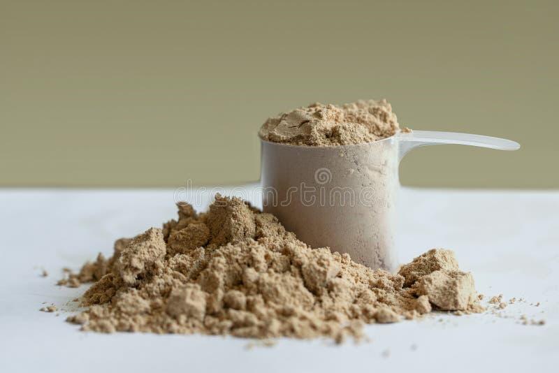 Schokoladenmolkeprotein mit einer Schaufel Tr?gt Nahrung zur Schau stockbilder