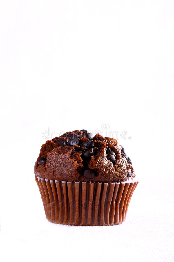 Schokoladenmuffin stockfoto
