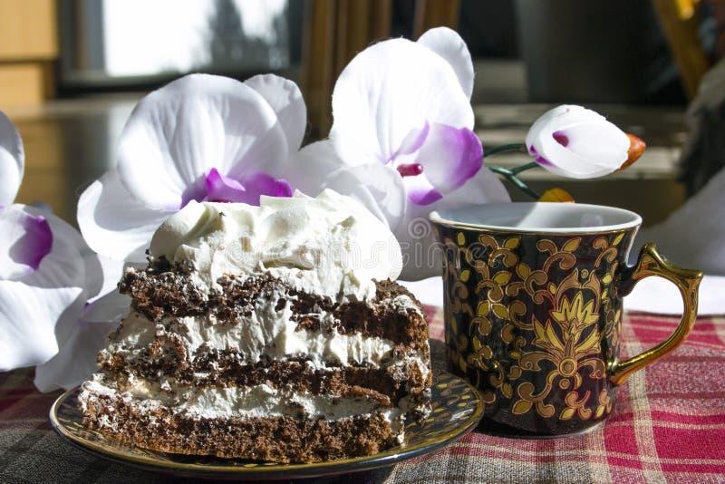 Schokoladenschwammkuchen, Becher, rchid auf roter karierter Tischdecke stockbilder