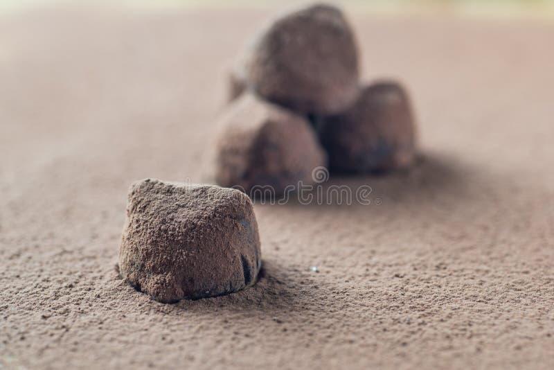 Schokoladentrüffelsüßigkeiten auf Kakaopulver stockfotografie