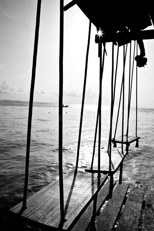 Schommeling door de oceaan royalty-vrije stock afbeeldingen