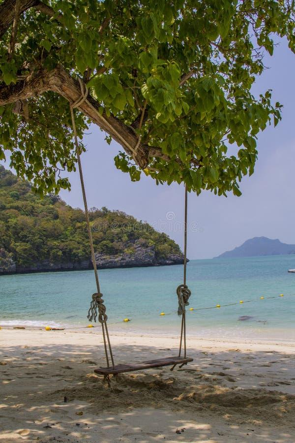 Schommeling in een strand royalty-vrije stock fotografie