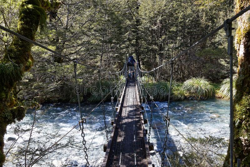 Schommelingsbrug, Hopeloze Kreek, Nelson Lakes National Park, Nieuw Zeeland stock fotografie