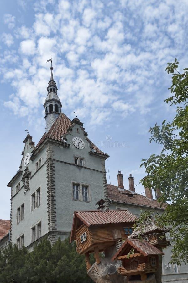 Schonborn城堡  免版税库存图片