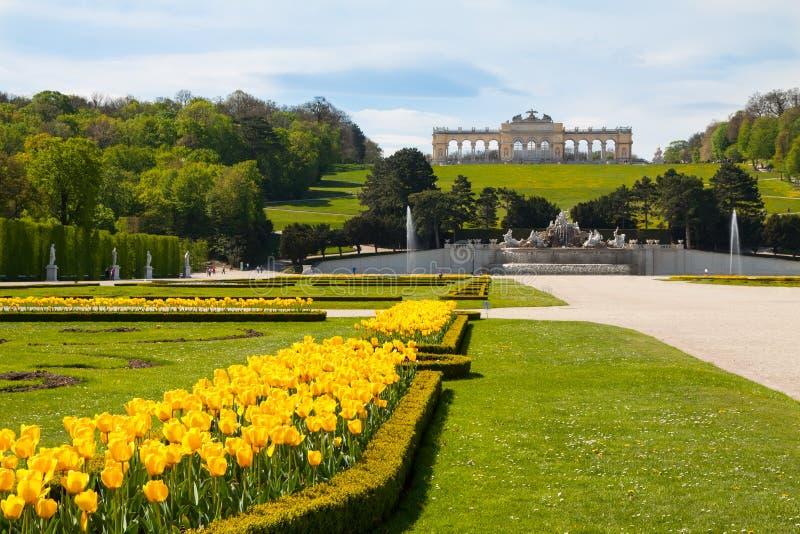 Schonbrunn宫殿庭院和Gloriette,奥地利 库存图片