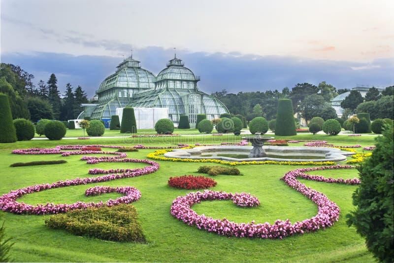 Schonbrunn的, Wien温室 库存照片