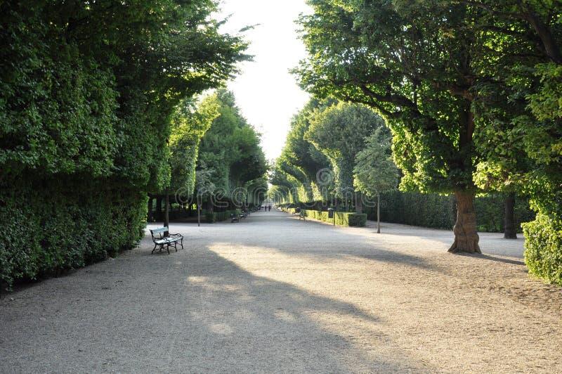Schonbrunn Gärten stockfotos