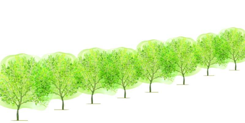 Schone verse groene illustraties als achtergrond royalty-vrije illustratie