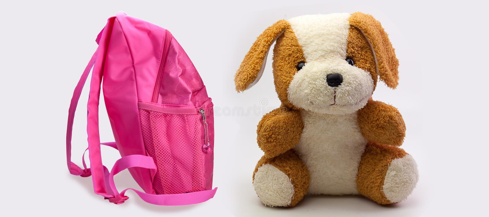 School backpack for girls and dog doll. On white background stock image