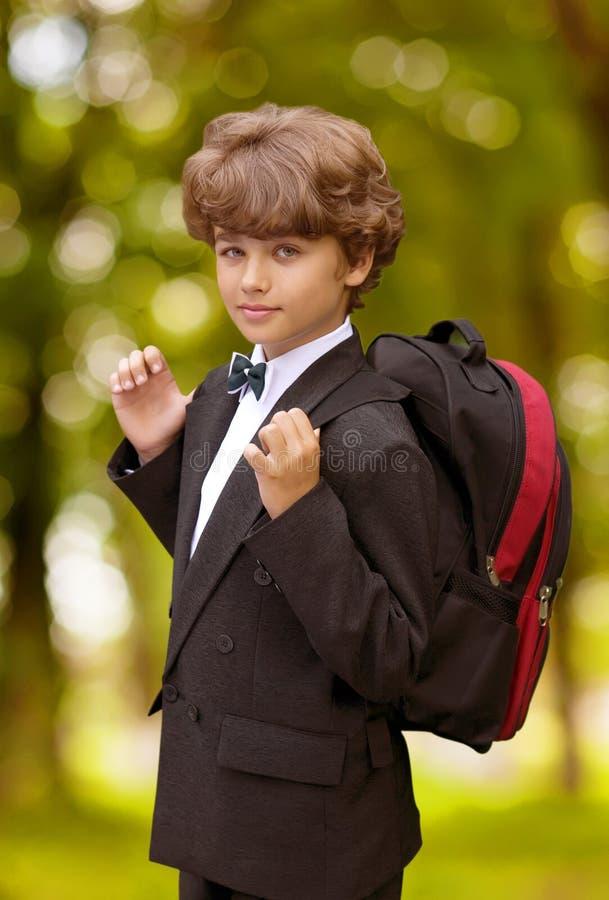 Download School Boy Royalty Free Stock Image - Image: 15705516