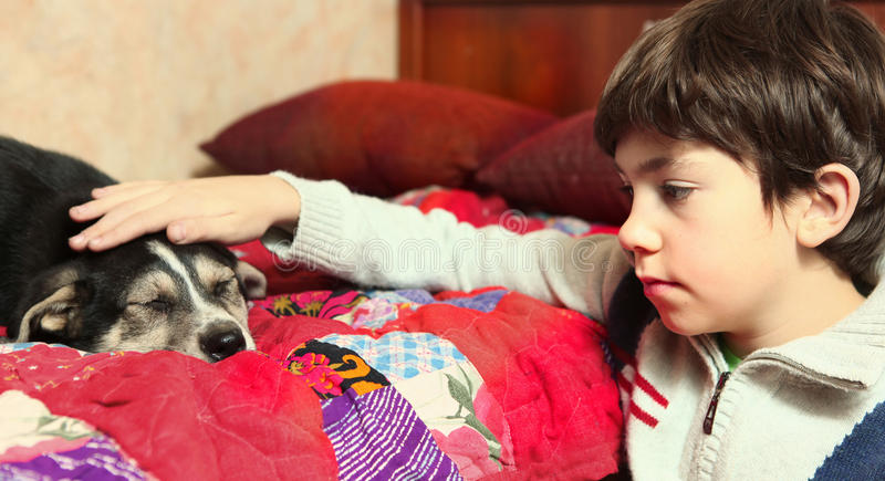 School boy and his little puppy look to each other. Boy and little puppy look to each other royalty free stock photography