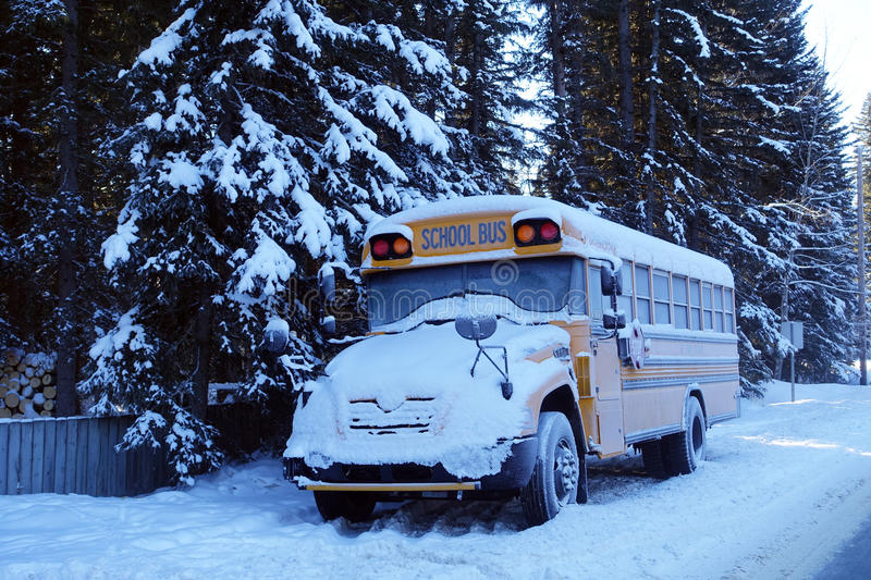 School bus. Covered in snow royalty free stock image