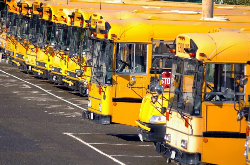 Download School Buses stock photo. Image of window, transport - 10410400