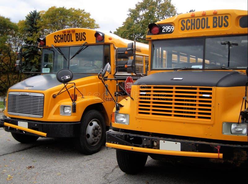 School buses stock image