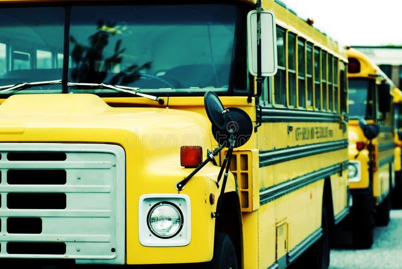 School Buses. Parked School Buses