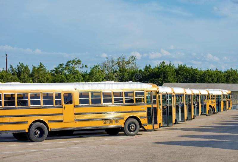School Buses Off-Duty royalty free stock photography