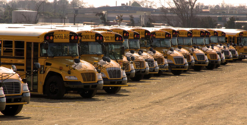 Download School Buses Parked In A Long Row Stock Image - Image: 18427471