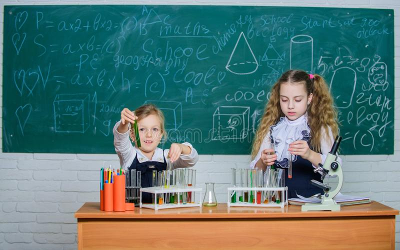 School equipment for laboratory. Girls on school chemistry lesson. Kids busy with experiment. School education. School royalty free stock photography