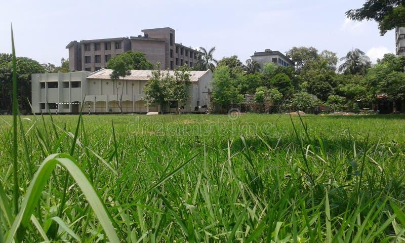 School field. stock photos