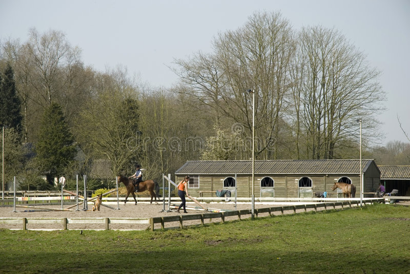School for horse-riding. And jumping stock images
