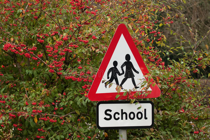 Download School Sign Among Red Berries Stock Photo - Image: 11786516