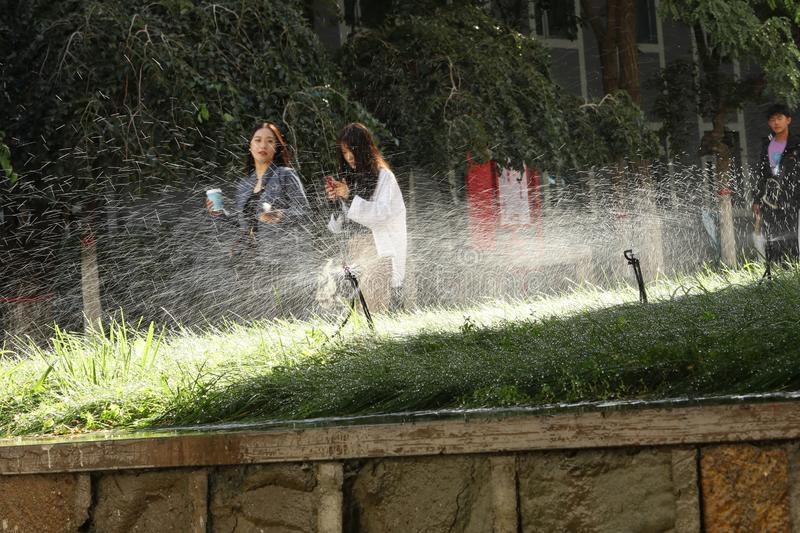 School starts. August and September are the opening seasons of various Chinese universities. The picture shows a college student who is irrigating the lawn and stock image