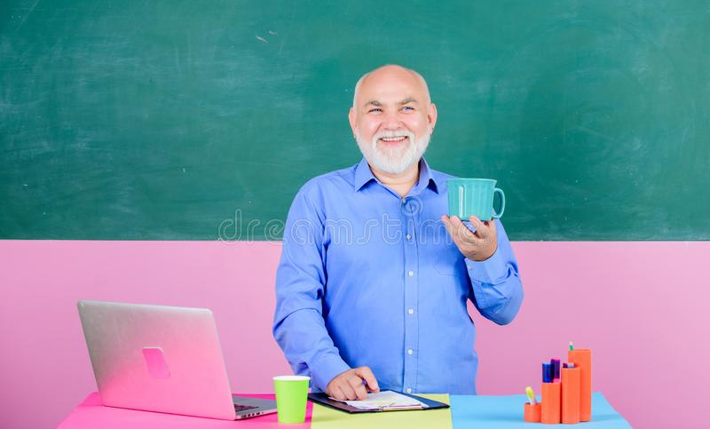 School teacher programming with laptop. Programming web development. Teacher teaching programming language. Handsome man. Use modern technology. Digital royalty free stock photos