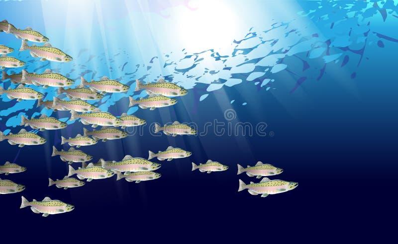 School van roze zalmvissen Het mariene leven Vectordieillustratie wordt geoptimaliseerd van in achtergrondontwerp, decoratie word stock foto's