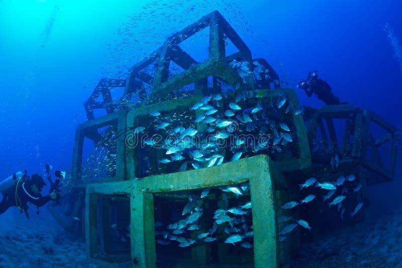 School van vissen en kunstmatige Gekubeerde Ertsader in Chumporn, Thailand stock afbeelding