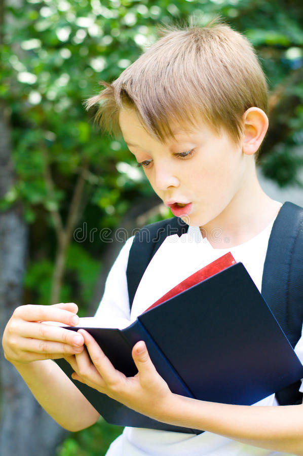 Download Schoolboy reading a book stock photo. Image of child - 33210900
