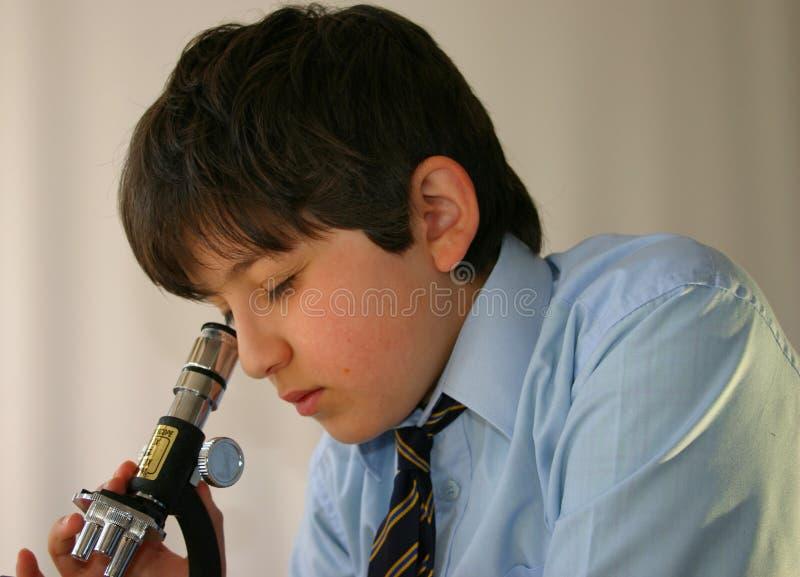 Schoolboy science royalty free stock image