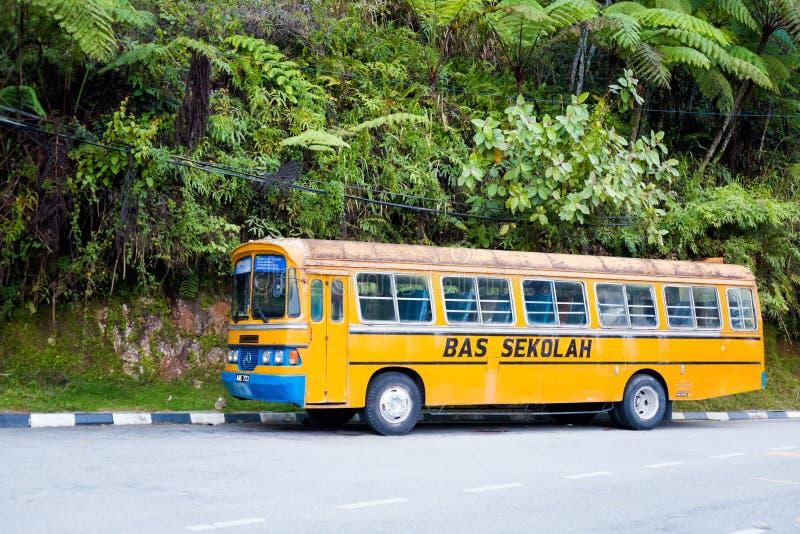 Schoolbus Tanah Rata Maleisië stock fotografie