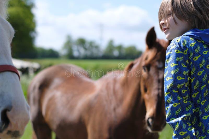 Schooljongen dichtbij de paarden op het landbouwbedrijf stock afbeelding
