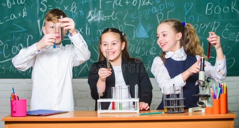 Schoollaboratorium De groepsscholieren bestuderen chemische vloeistoffen Meisjes en jongens de schoolexperiment van het studenten royalty-vrije stock afbeeldingen