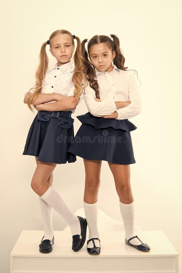 Schoolmeisjes arrogante arrogant met paardestaartenkapsel Beste vrienden uitstekende leerlingen De perfecte schoolmeisjes ruimen  royalty-vrije stock foto