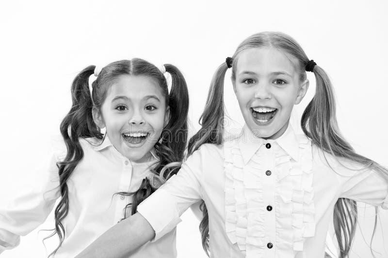 Schoolmeisjes met leuk paardestaartenkapsel en briljante glimlachen Beste vrienden uitstekende leerlingen De perfecte schoolmeisj royalty-vrije stock afbeelding