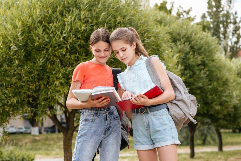 Schoolstudenten het Samenwerken; het lachen en het omhelzen royalty-vrije stock afbeeldingen